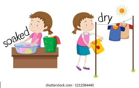 Opposite word of soaked and dry illustration