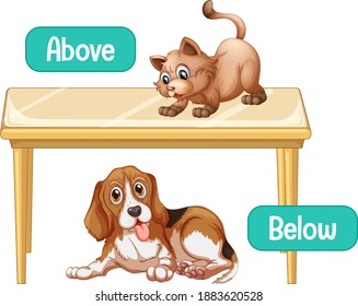 Opposite words with above and below illustration