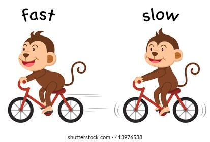 Opposite words fast and slow vector illustration