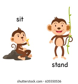Opposite words sit and stand vector illustration