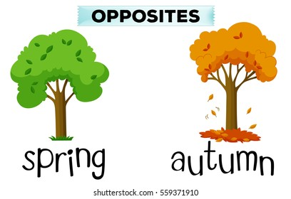 Opposite words for spring and autumn illustration