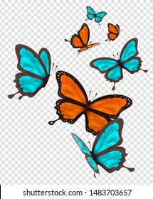 Orange and blue butterfly isolated on transparent background. Beautiful butterflies flying with colorful wing.
