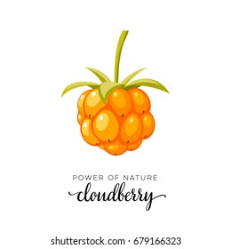 Orange cloudberry berry flat icon with inscription colorful vector illustration of eco food isolated on white.