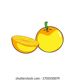 Orange fruit. Oranges that are segmented on a white background. Yellow orange fruit vector. orange fruit is a fruit that is sour and has high vitamin C. Helps to feel fresh. lemon.