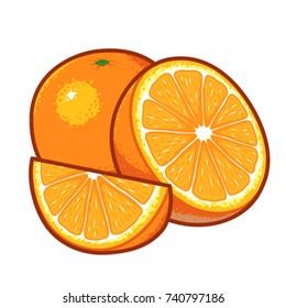 Orange fruit vector colored outlines.