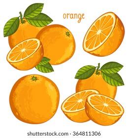 Orange fruit vector isolated set packaging juice design composition on white background illustration