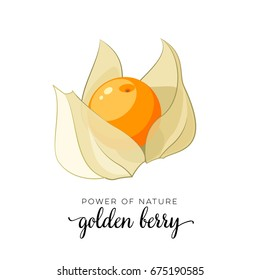 Orange golden berry flat icon with inscription colorful vector illustration of eco food isolated on white.