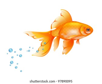 Orange Goldfish with bobbles of air.