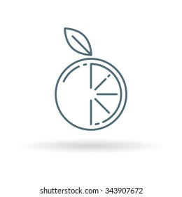 Orange icon. Fruit sign. Citrus symbol. Thin line icon on white background. Vector illustration.