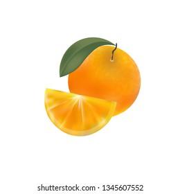 Orange. Isolated. Vector.