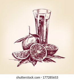 orange juice vintage hand drawn vector illustration