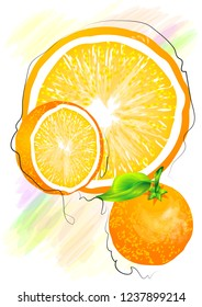 orange on multicolor  background. abstract fruit