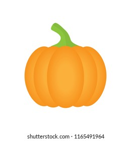Orange pumpkin vector illustration. Autumn halloween or thanksgiving pumpkin, vegetable graphic icon or print, isolated.