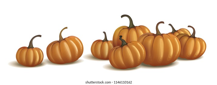 Orange pumpkins isolated on white and on black. Realistic vector pumpkins.