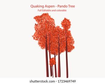 Orange and Red Color. Quaking aspen Pando tree flat vector icon illustration