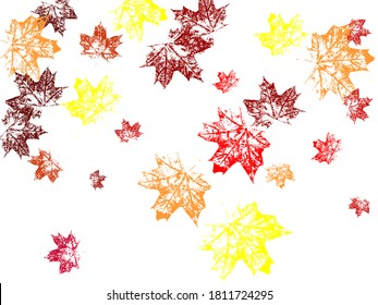 Orange and red fall design element with maple leaves and seeds Maple leafs silhouette autumn wind. Cool tree foliage september background graphics.