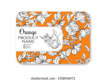 Orange. Ripe citrus. Template for product label, cosmetic packaging. Easy to edit. Graphic drawing, engraving style. Vector illustration.
