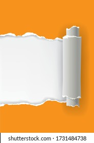 Orange ripped paper rolled up, banner template.  Illustration of orange torn paper with place for your image or text. Vector available