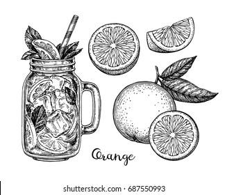 Orange set. Isolated on white background. Hand drawn vector illustration. Retro style ink sketch.