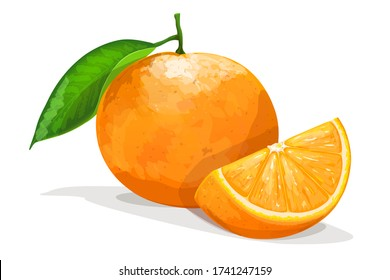 Orange with slice isolated on white background. Vector illustration