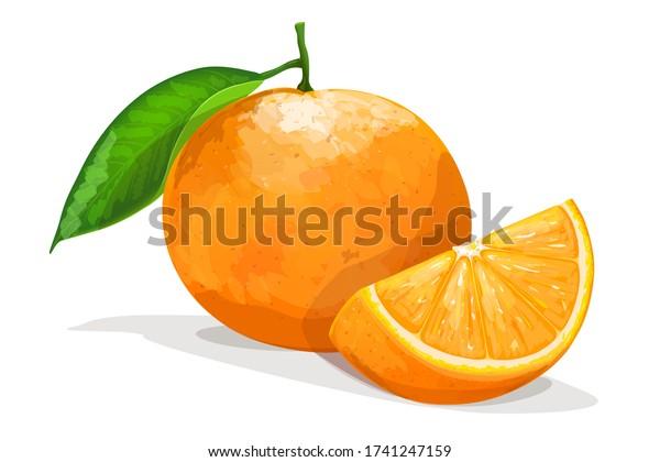 Orange with slice isolated on white background. Vector illustration