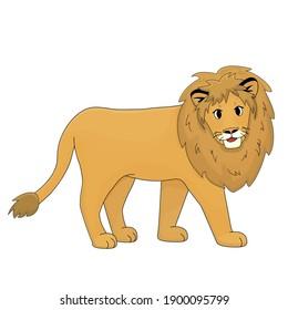 Orange smiling lion is walking. Isolated animal on white background