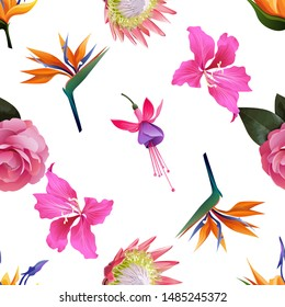 Orange Strelitzia. Pink Balsam. Pink Protea. Orange Strelitzia Reginae. Pink Bauhinia Purpurea. Pink and Purple Fuchsia Bella. Vector illustration. Seamless background pattern. Floral botanical.