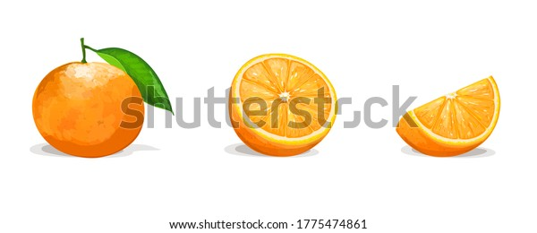 Orange with two slices isolated on white background. Vector illustration