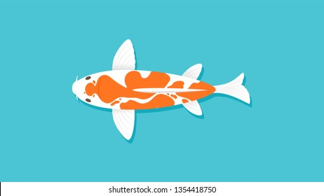 Orange White Koi fish swimming on blue water, top view, Cartoon Character, Flat vector illustration Design, separate layers for animation.