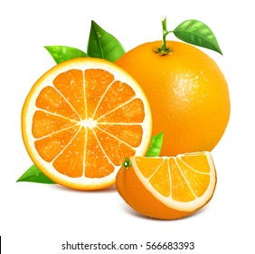 Orange whole and slices of oranges. Vector illustration of oranges. Fully editable handmade mesh. - Shutterstock ID 566683393