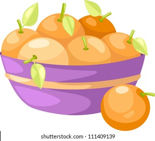 oranges in basket vector  illustration