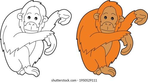 Orangutan vector drawing animal vector drawing, cartoon vector, line art and color