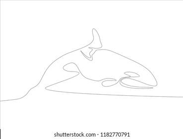 Orca. Continuous line