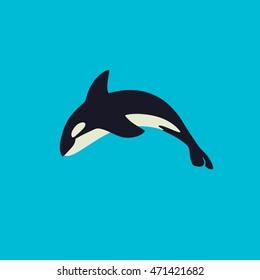 Orca killer whale, flat illustration.