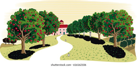 Orchard with apple trees.