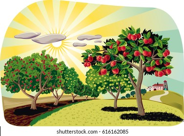 Orchard with rows of apple trees at dawn