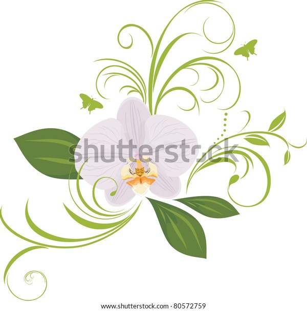 orchid-decorative-sprigs-vector-600w-805