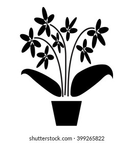 Orchid. Potted plants silhouette isolated on white background.