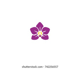 Orchid vector flower isolated on white background