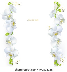 Orchids. White flowers. Tropical plants. Floral background. Border.