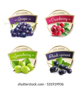 Organic berries labels collection with gooseberry grape cranberry black currant for package design isolated vector illustration