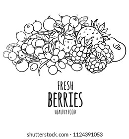Organic berries vector black and white background. Healthy summer template for design, web banner and printed materials.