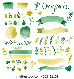 Organic, bio, natural design elements. Vintage vector watercolor set in green colors.