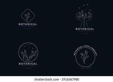 organic botanical minimal natural iconic graphic decor linear simple floral logo design