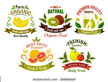 Organic food emblems of healthy fresh fruits with apples, bananas, oranges, kiwis and pears with juice, framed by green leaves, vintage ribbon banners and colorful swirls
