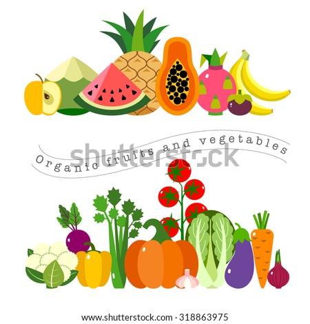 organic fruits vegetables template vector illustration のベクター