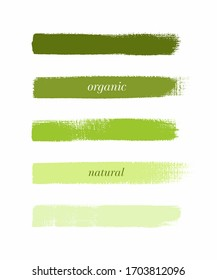 Organic green line art brush paint texture set isolated vector background. Paint strokes design.