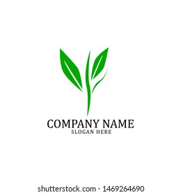 organic and green nature logo template