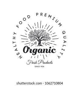 Organic natural and healthy farm fresh food retro emblem design. Vintage round olive tree logo isolated on white background. Premium quality fashion sun light rays badge logotype poster illustration.