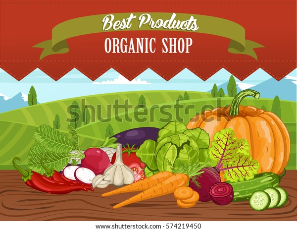 Organic Shop Banner Vegetable On Wooden Stock Vector Royalty Free 574219450
